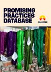 Walk-Free---Promising-Practices-DATABASE-COVER