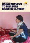 2017 Insight Series 02: Using Surveys to Measure Modern Slavery